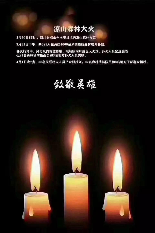 沉痛悼念四川凉山木里县森林火灾牺牲的英雄们