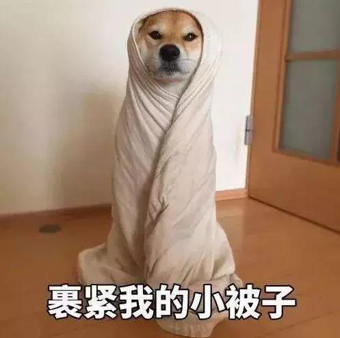 吴越学校温馨提示:今日霜降,注意防寒~