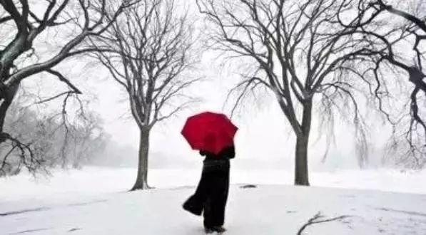 孔子借伞,此生必看