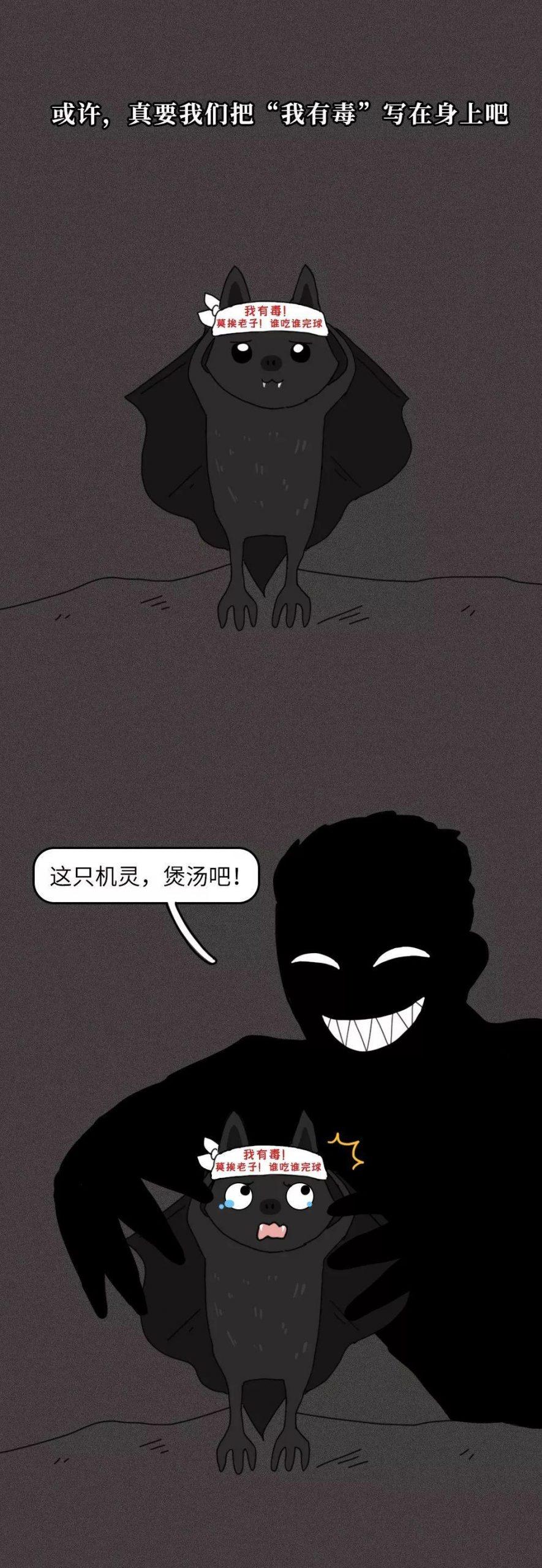 一只蝙蝠的自述在朋友圈火了:千 万 不 要 吃 野 味 !